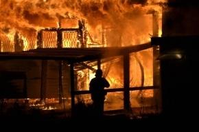 В Ленобласти при пожаре погибли пенсионерка со своей внучкой
