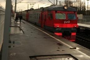 Под Петербургом мигранты избили контролера в электричке