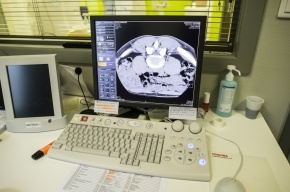 Ученые: Замедленная реакция увеличивает риск смерти