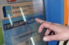Из магазина «Свежее мясо и молоко» в Петербурге вынесли терминал Qiwi
