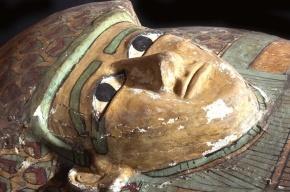 В Египте найден саркофаг с мумией возрастом 3,6 тысяч лет