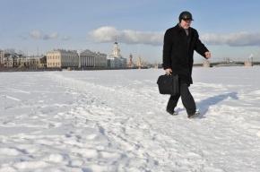 ЗакС увеличит московские суточные петербургским чиновникам в семь раз
