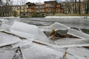 Арбитражный суд запретил строительство гостиницы в Лопухинском саду