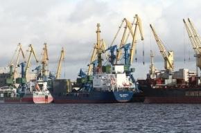 В Петербург не пустили 150 тонн аргентинского масла с насекомыми
