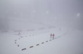 В Сочи из-за тумана перенесены состязания по сноуборд-кроссу