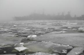В Петербурге пожарные сняли со льда Большой Невки шестерых школьников