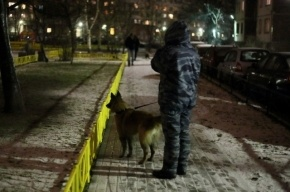 Националисты взяли ответственность за убийство курсанта в Петербурге