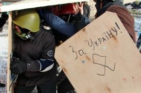 Сторонники и противники Евромайдана подрались в центре Петербурга