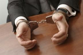 В Петербурге задержали шесть человек за хищения 4 млрд руб из бюджета