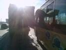 В массовом ДТП на Кушелевской дороге в Петербурге пострадали дети: Фоторепортаж