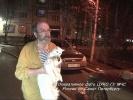 Пожарные спасли 11 кошек из горящей квартиры в Петербурге: Фоторепортаж