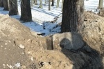 Фоторепортаж: «На территории Фарфоровского кладбища нашли надгробие XIX века»