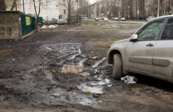 Микрогород на Пулковской улице: трэш, хоррор и дохлые голуби