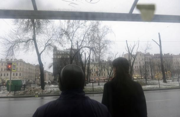 Центровая оборона: как жители Петербурга объединились, чтобы отстаивать свои дома