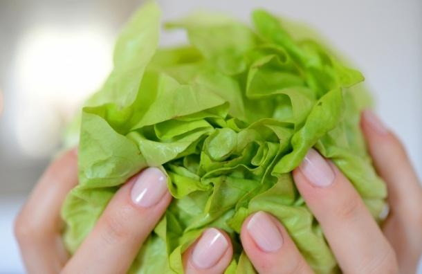Вегетарианство поможет в борьбе с лишним весом, но может подорвать здоровье