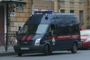 Десятилетняя школьница изнасилована и убита в Подмосковье