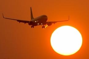 Дебошир с самолета Москва-Гоа арестован на десять суток