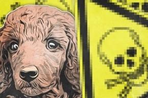 Кто и как убивает собак