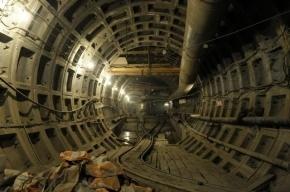 В Петербурге произошел очередной сбой на «синей ветке» метро