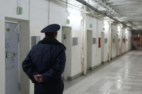 Полиция задержала жителя Ленобласти, который на протяжении года насиловал двух школьниц