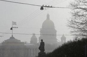 В Петербурге ожидается сильный ветер и метель