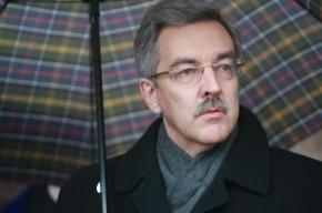 Омбудсмен Петербурга призвал смягчить городской закон о митингах