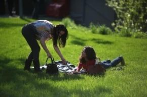 В Сестрорецке летом откроется вторая «Новая Голландия»