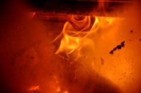 В Троицке родители сожгли в печи тело ребенка, рожденного на пятом месяце