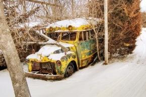 В Красноярском крае в автобусе убили водителя и женщину-кондуктора