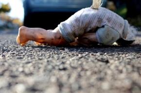 Житель Ленобласти, случайно убивший девятимесячного сына, ожидает суда