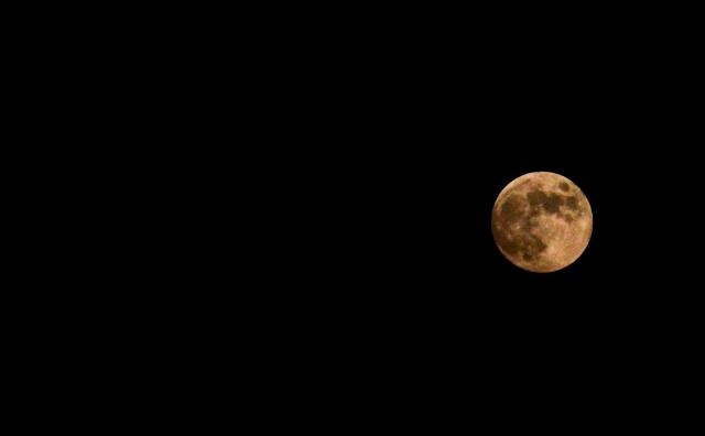 Лунное затмение : Фото