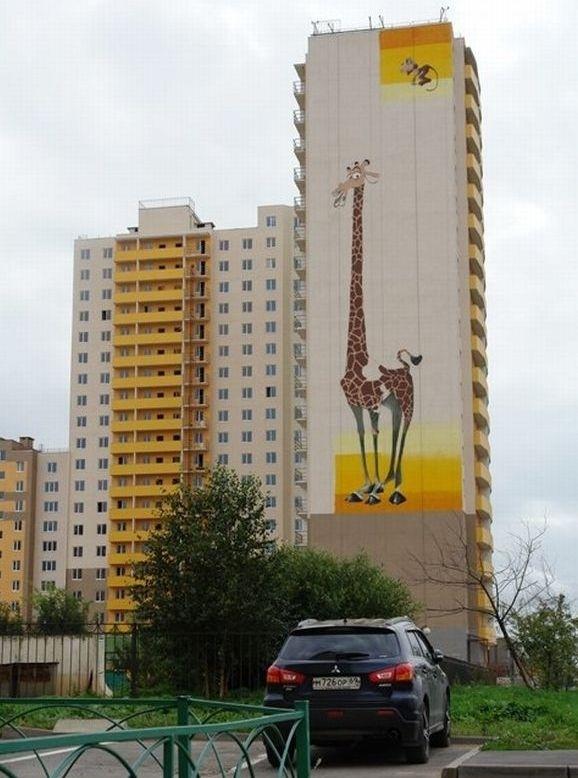 Жираф. фото Екатерина Краева