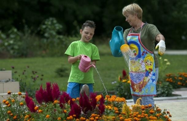 Как дедушки и бабушки помогают в воспитании ребёнка