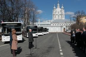 Олимпийские автобусы выйдут на петербургские маршруты