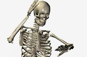 В Москве скелет человека нашли возле станции метро