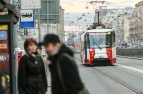 На Дальневосточном проспекте девушка попала под трамвай