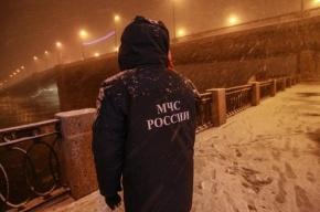 Петербуржец спас тонущую в Неве самоубийцу
