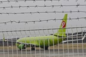 Пассажирский Airbus с горящим двигателем  вынужденно сел в Домодедово