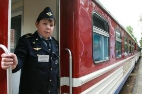 В Петербурге собираются уничтожить детскую железную дорогу