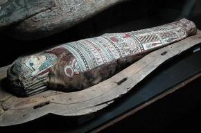 Египетские археологи нашли в древнем городе мумии писаря и рыбы