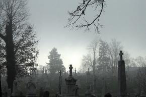 Раскрыто жестокое убийство петербуржца, найденного в канаве на кладбище