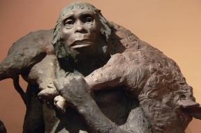 Ученые выяснили настоящую причину вымирания неандертальцев