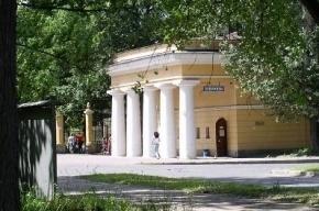 Территорию у стадиона «Динамо» в Петербурге застроят элитным жильем