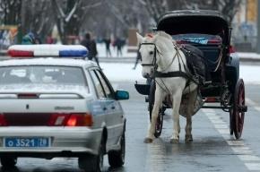 На Дворцовой набережной карета с лошадьми сбила мужчину