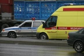 Выходец из СНГ сбил шестилетнего ребенка в Петербурге