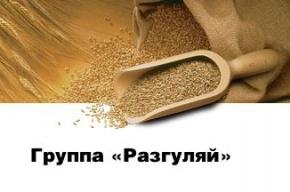 У российского агрохолдинга «Разгуляй» украли 20 млрд рублей