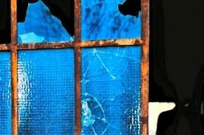 В Петербурге хулиганы разбили стекла в детской поликлинике
