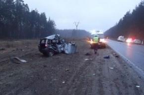 В Подмосковье в аварии с рейсовым автобусом погиб человек