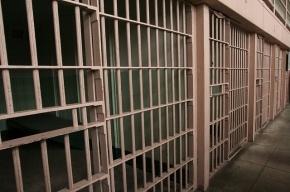 Незаконное задержание многодетной матери в Петербурге обернулось уголовным делом