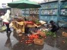 Фоторепортаж: «Погром на Проспекте Просвещения»